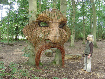 giant willow head photo